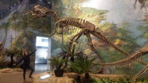 Dinosaur 300x169 - Don't Mind if I Cheng-Du! Insider Tips on Teaching English in Sichuan, China
