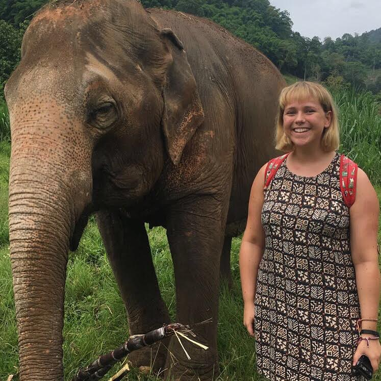 Beth taking a picture with an elephant