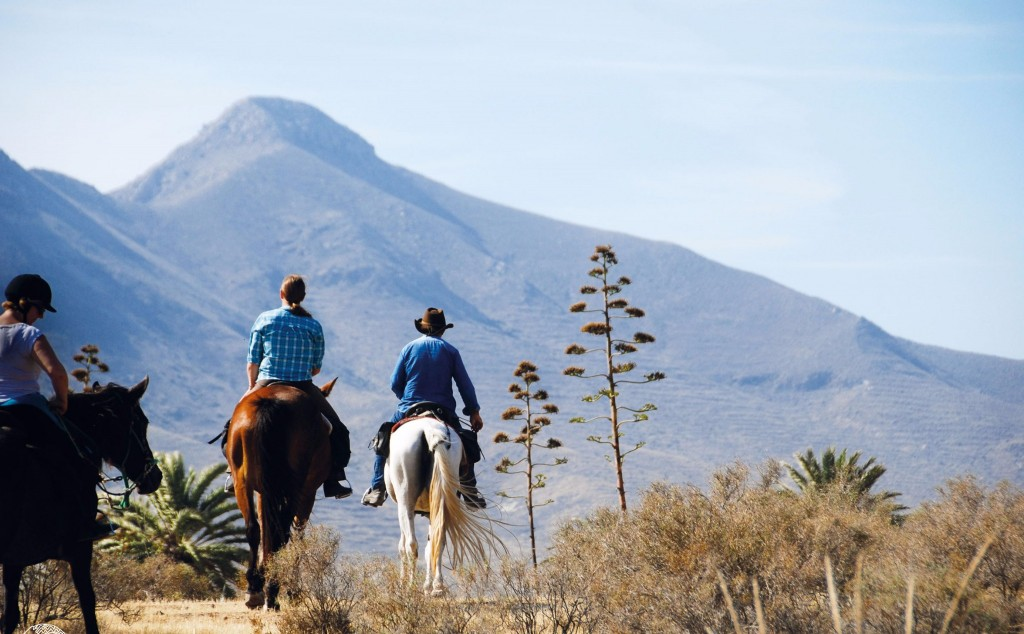 A group of people horse riding through the mountains of Spain.