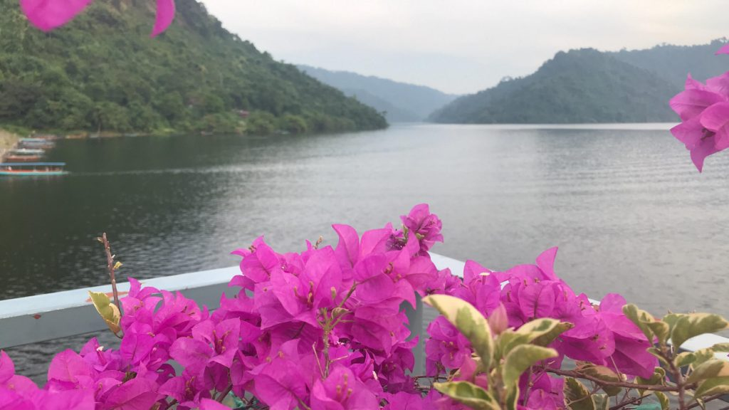 Flowers looking out over the water in Thailand