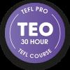 Premier Pro TEO 30 hour TEFL course