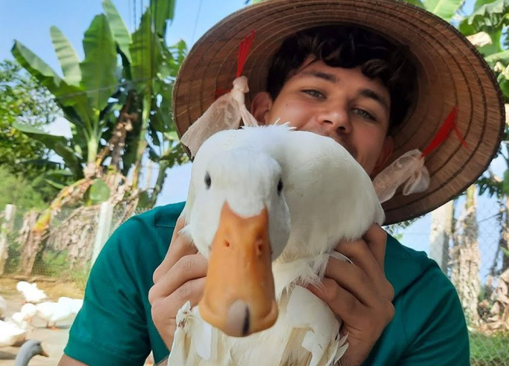 Will holding a duck