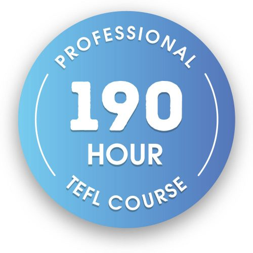 190 hour Professional Online Expert Certification
